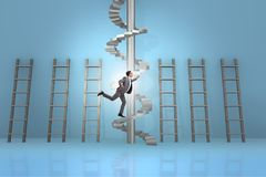 The career progression concept with ladders and staircase. Career progression concept with ladders and staircase Royalty Free Stock Image