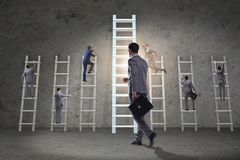 The career progression concept with various ladders. Career progression concept with various ladders Royalty Free Stock Image
