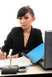 Career woman. Portrait of career woman in office Royalty Free Stock Photos