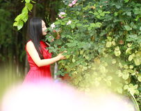 Carefree beauty enjoy free time, healthy living concept, pure happiness and freedom. Asian Chinese woman enjoy free time, beautiful graceful girl, healthy living Stock Photography