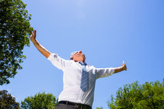 Carefree businessman with arms outstretched. Low angle view of carefree businessman with arms outstretched standing against blue sky Stock Photos