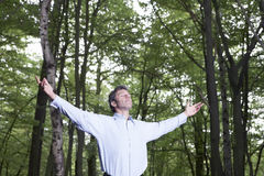 Carefree Businessman Standing Alone In Forest Stock Photography