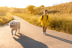 Carefree child walking near meadow with his puppy Royalty Free Stock Photo
