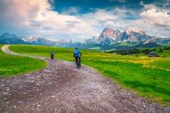 Free Carefree Couple Riding Mountain Bike On The Alpine Trail, Italy Stock Photo - 147448150