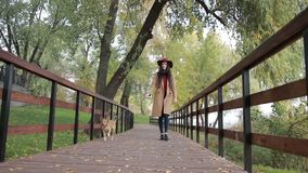 Fashionable woman walking the dog in public park stock video footage