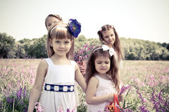Carefree girls. In the meadow Royalty Free Stock Images