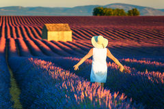 Carefree Happy Woman Enjoying Nature on lavender meadow. Wonderful free happy woman enjoying nature. Freedom concept with stunning lavender field Stock Photography
