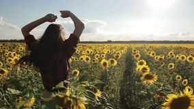 Carefree happy woman running in sunflower field stock video