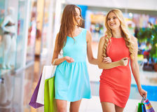 Carefree shopaholics Stock Image