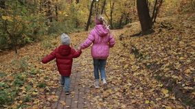 Carefree siblings running in autumn park. Cute toddler boy and his teenage sister holding hands and running through colorful autumn park. Back view. Joyful stock video