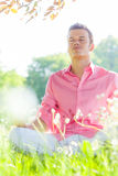 Carefree success man. Happy carefree peaceful male enjoying good weather in field Royalty Free Stock Photo