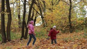 Siblings playing with maple leaves in autumn park stock video