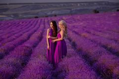 Carefree two beautiful women enjoying sunset in lavender field. Harmony. Attractive blond and brunette with long curly hair style stock image