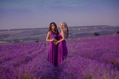 Carefree two beautiful women enjoying sunset in lavender field. Harmony. Attractive blond and brunette with long curly hair style royalty free stock images