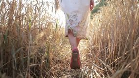 Carefree woman walking in ripe wheat field stock footage