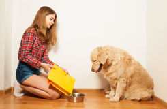 Careful girl filling pet's bowl with dry forage Stock Photography