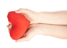 Carefully holding heart with two hands. Carefully holding a red plush toy heart with two hands, composition isolated over the white background Royalty Free Stock Images