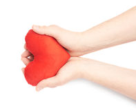 Carefully holding heart with two hands. Carefully holding a red plush toy heart with two hands, composition isolated over the white background Stock Photos