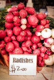 Carefully stacked Radishes at a local farmers market Royalty Free Stock Photography