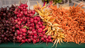 Carefully stacked vegetables at a local farmers market. Carrots, Radishes and beats stacked at the market Royalty Free Stock Photos