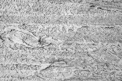 Careggiata in strada del fango Fotografie Stock Libere da Diritti