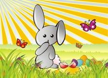 Careless bunny. Careless grey bunny smashed an easter egg Stock Photo