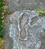 Careless Footprints ruining wet cement. On newly repaired sidewalk Royalty Free Stock Photography