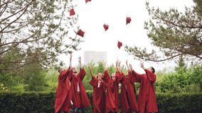 Careless graduating students are throwing mortarboards in air then catching them, laughing and clapping hands. Celebrating graduation. Celebration, education stock footage