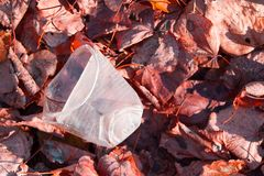 A carelessly throw away plastic. In a forest royalty free stock photos