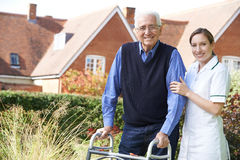 Carer Helping Senior Man To Walk In Garden Using Walking Frame Royalty Free Stock Image