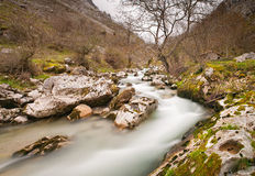 Cares river in Asturias, Spain. Royalty Free Stock Photography