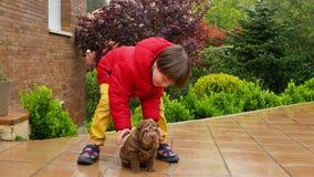 Caresse d'enfant son Shar Pei Puppy banque de vidéos