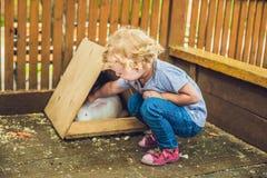 Caresses de fille d'enfant en bas âge et jouer avec le lapin dans le parc animalier concept de la durabilité, amour de la nature, Photographie stock