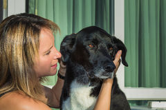 Caressing dog Royalty Free Stock Images