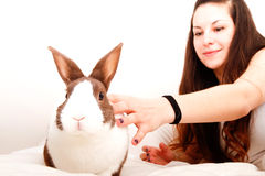 Caressing a rabbit in bed Stock Photos