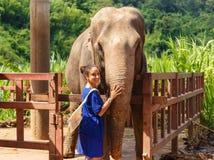 Caresss de la muchacha un elefante en el santuario en Chiang Mai Thailand Fotos de archivo
