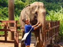 Caresss de la muchacha un elefante en el santuario en Chiang Mai Thailand Fotografía de archivo libre de regalías