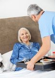 Caretaker Serving Breakfast To Happy Senior Woman. Male caretaker serving breakfast to happy senior women on bed in nursing home Stock Image