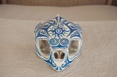 Caretta czaszki przód Fotografia Royalty Free