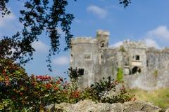 Carew城堡 免版税库存照片