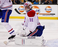 Carey Price Montreal Canadians goaltender. Royalty Free Stock Image