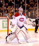 Carey Price Montreal Canadiens Royalty Free Stock Image