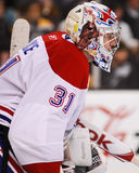 Carey Price Montreal Canadiens Lizenzfreie Stockbilder