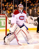 Carey Price Montreal Canadiens Stock Image
