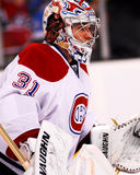Carey Price Montreal Canadiens Royalty Free Stock Photo
