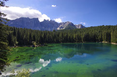 Carezza Lake Royaltyfri Foto