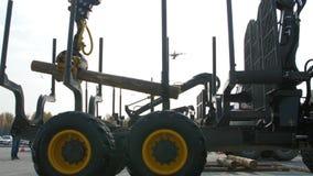 Carga pesada do equipamento com logs do corte da tosquiadeira Grande carregador e operações do log na jarda do log em um log das  vídeos de arquivo