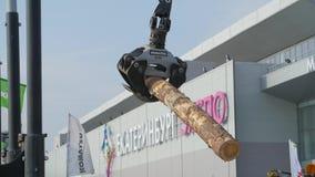 Carga pesada do equipamento com logs do corte da tosquiadeira Grande carregador e operações do log na jarda do log em um log das  video estoque
