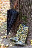 Cargadores del programa inicial de goma y paraguas Foto de archivo libre de regalías
