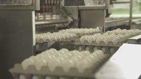 Cargamento automático de huevos en transportador mediante las ventosas metrajes